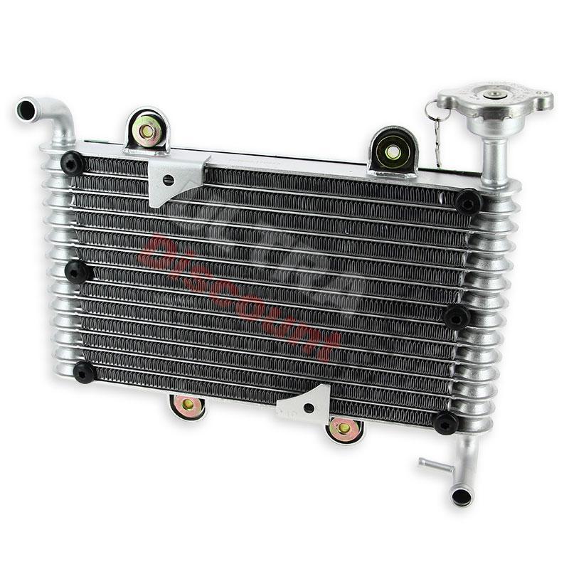 radiateur quad bashan 200cc bs200s 7 pi ces bashan. Black Bedroom Furniture Sets. Home Design Ideas